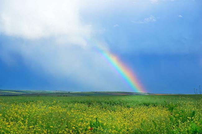 Hur man hanterar en regnbåge